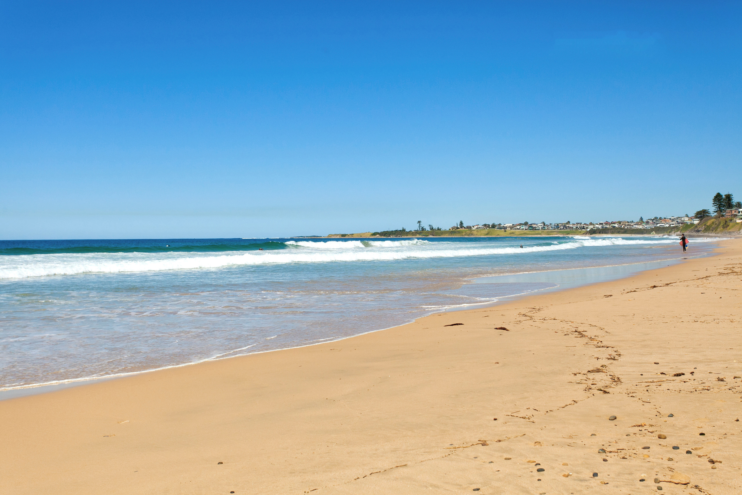Thirroul Trend: Find out how much Thirroul is growing and who is buying